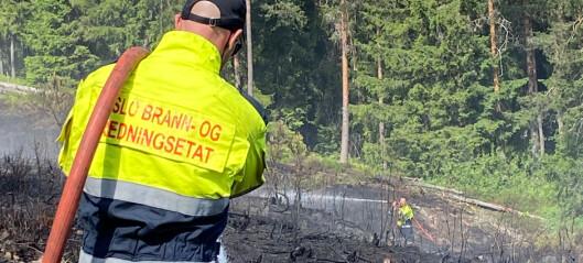 Brigadesjefen om skogbrannen: — Jeg var overrasket over hvor fort denne spredte seg