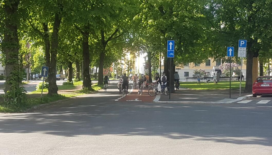 Børge A. Roums eget bilde fra Gyldenløves gate viser en gjeng på rundt 20 stykker som var på sykkeltur i gata i begynnelsen av juni. Noen barn leker med en hund på Arno Bergs plass.