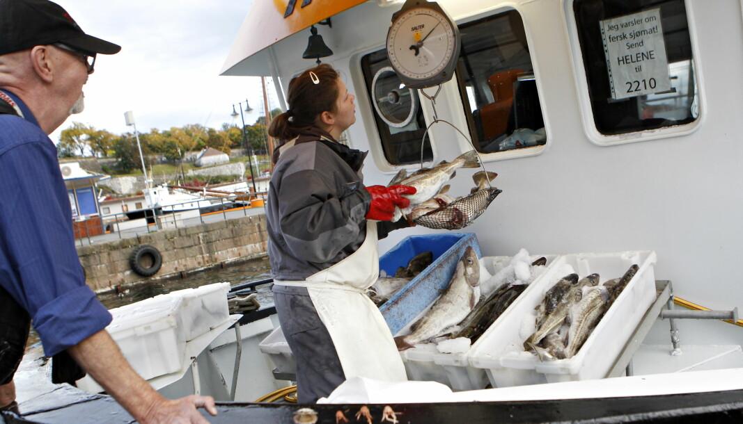 På Rådhusbrygga har folk kunnet kjøpe fersk fisk fra Oslofjorden.