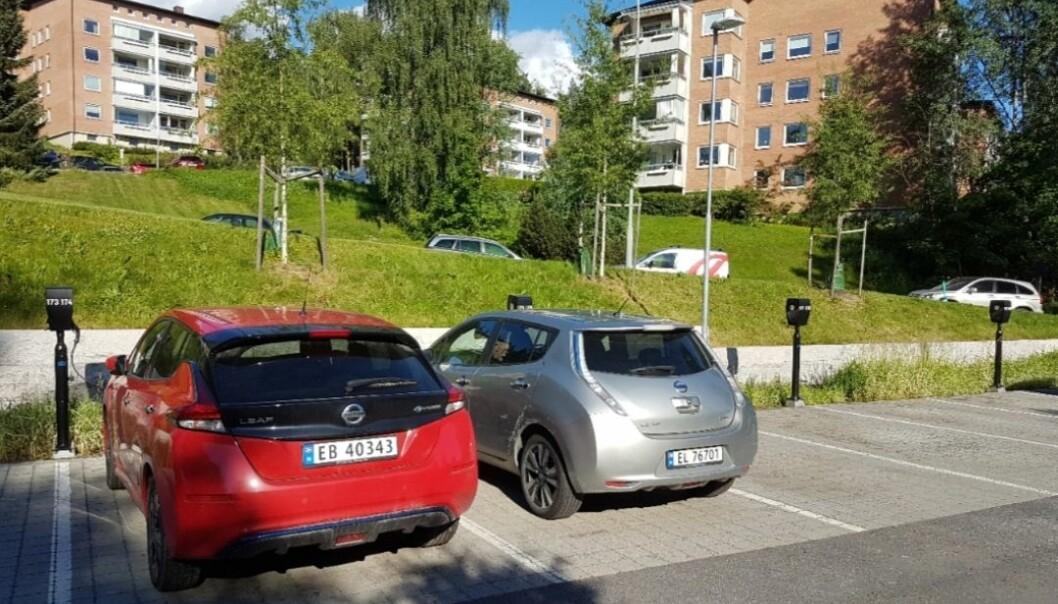 Å fjerne elbiler vi ikke minske klimautslippene noe særlig, mener skribenten.