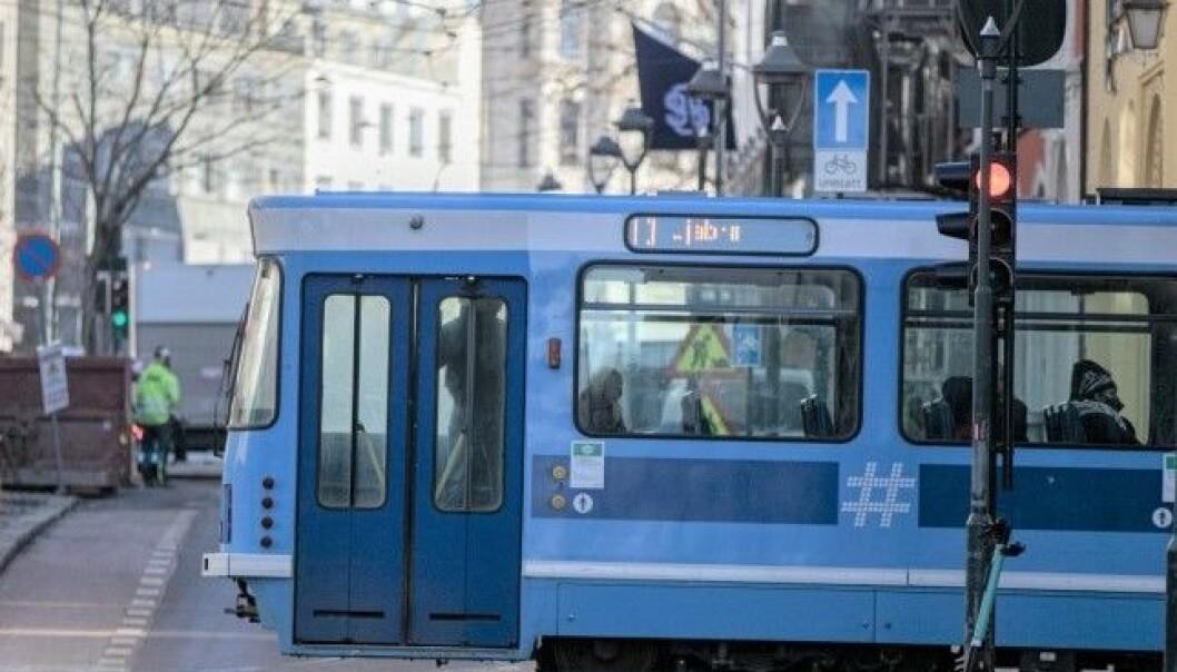 Trikkens linjer kjører 15 minutters rute på hverdager klokken 7–19 og på lørdager klokken 10–19 fra og med mandag 5. juli til og med 8. august.