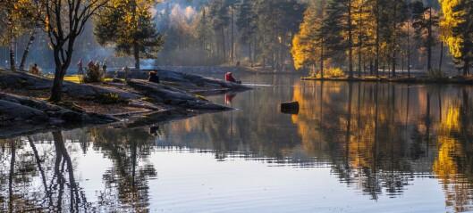 Mann i slutten av 20-årene reddet fra å drukne i Sognsvann