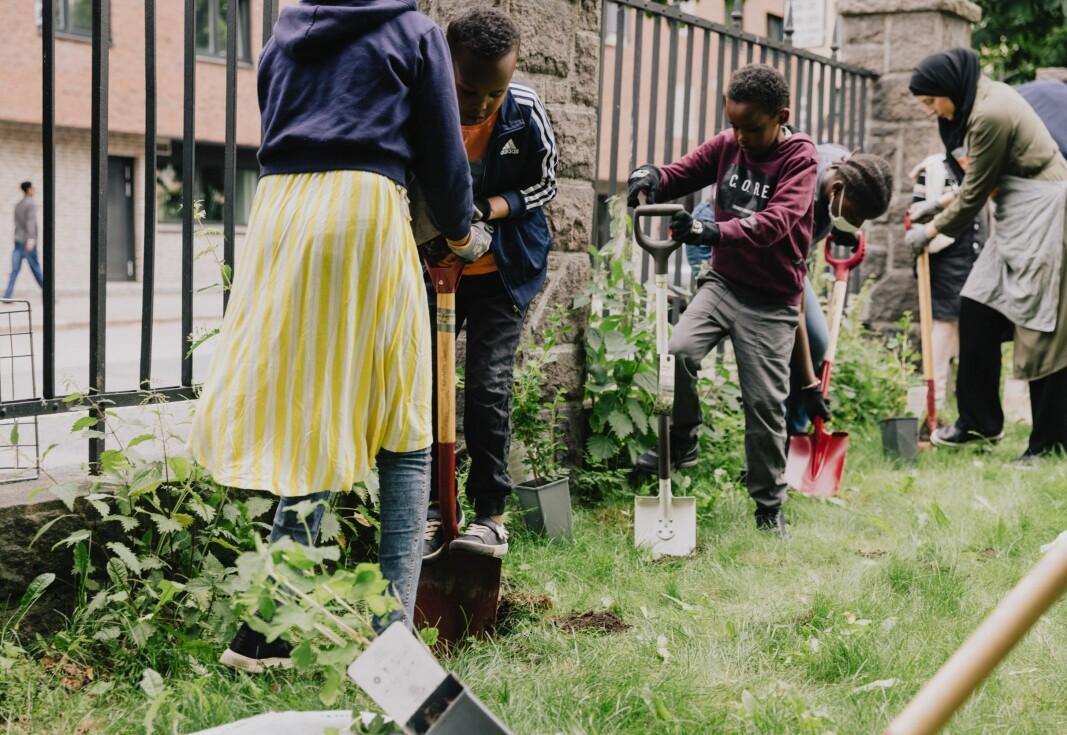 Da buskene skulle settes i jorda ved Hersleb videregående skole var det en god miks av folk fra nærmiljøet som stilte opp.
