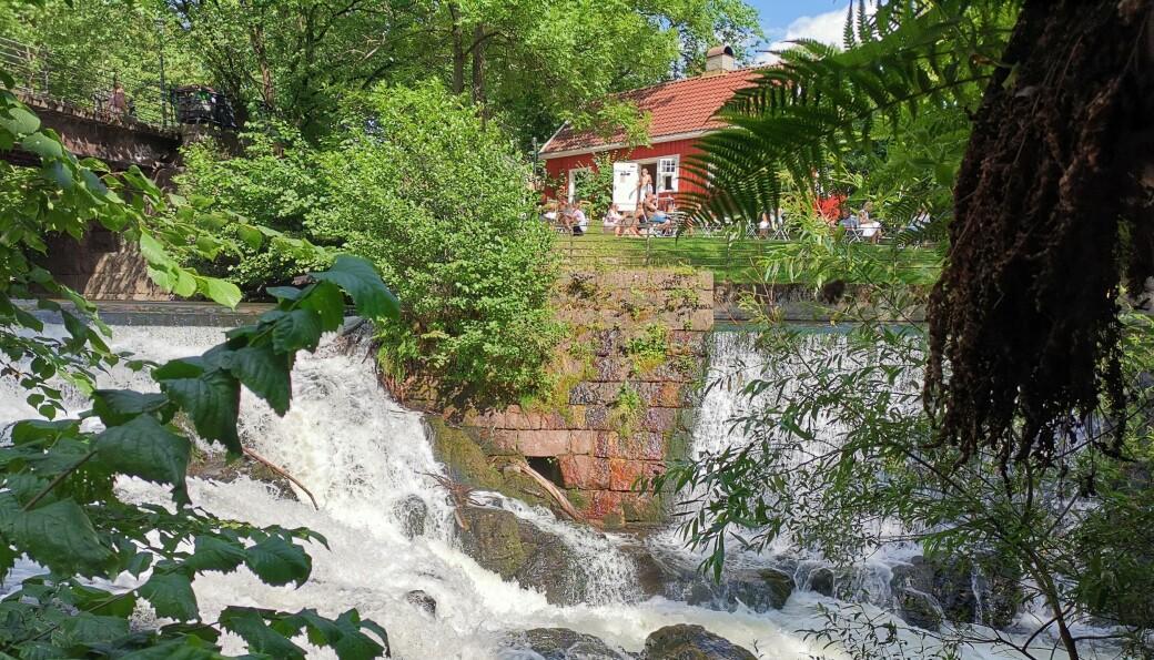 Her ser vi Nedre Vøyen foss, som er fossen nedenfor Beyerbrua, og på den andre siden den koselige kafeen Hønse-Lovisas hus, i dag klokken 15.30. Fossen er vakker men rolig etter at Vann og avløpsetaten reduserte vannføringa i Akerselva klokken 14.