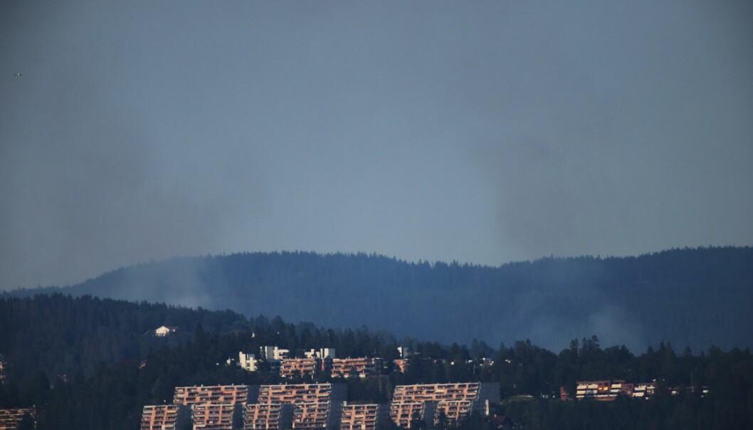 Røyken fra skogbrannen kunne sees både fra Oslofjorden og fra Asker. Her sett fra Hvalstad. Foto: Ørn Borgen / NTB