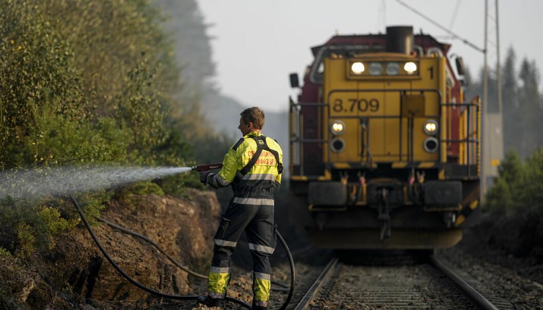 Brannvesenet slukket en skogbrann langs Gjøvikbanen i Maridalen i går kveld. Foto: Fredrik Hagen / NTB