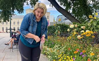 Nå er det bare å forsyne deg med frø fra kommunens blomsterbed