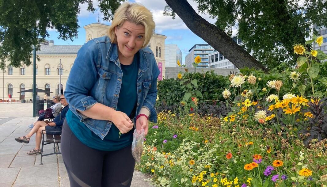 Helene Gallis sanker ringblomstfrø på Rådhusplassen.