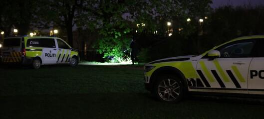 Mann kjørte bil inne i Frognerparken - nå er han fratatt lappen