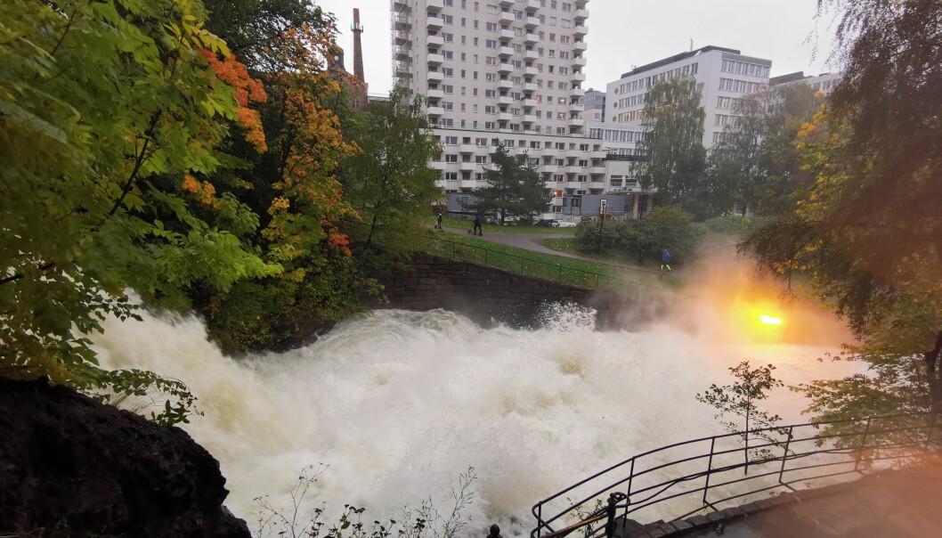 Dette bildet er tatt ved Vøyenfallene søndag ettermiddag. Noen timer senere besluttet vann- og avløpsetaten å øke vannføringen i Akerselva ytterligere.