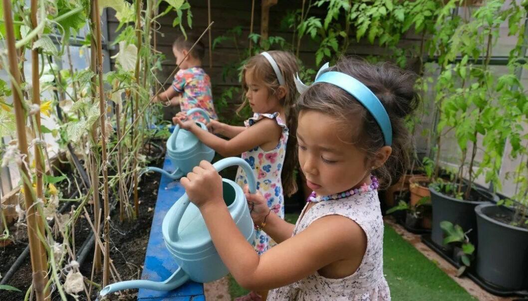 Barna i Strekkoden barnehage vanner plantene i det nye drivhuset.